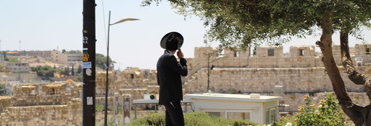 The Shas Movement and Haredi-Sephardi Community at the End of Rabbi Ovadia Yosef's Era