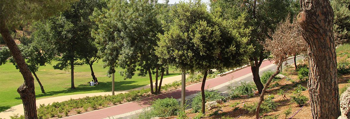 הרצועות הירוקות בירושלים- מגן סאקר לעמק הצבאים